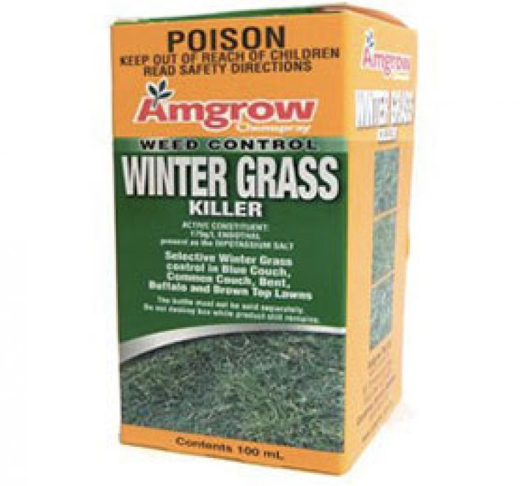 Winter Grass Killer